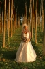 Weddings_57